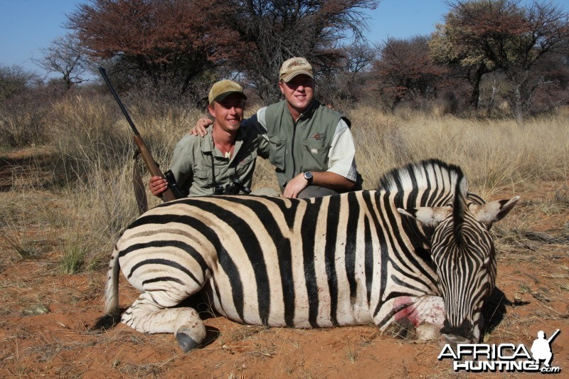 Zebra hunted in Namibia