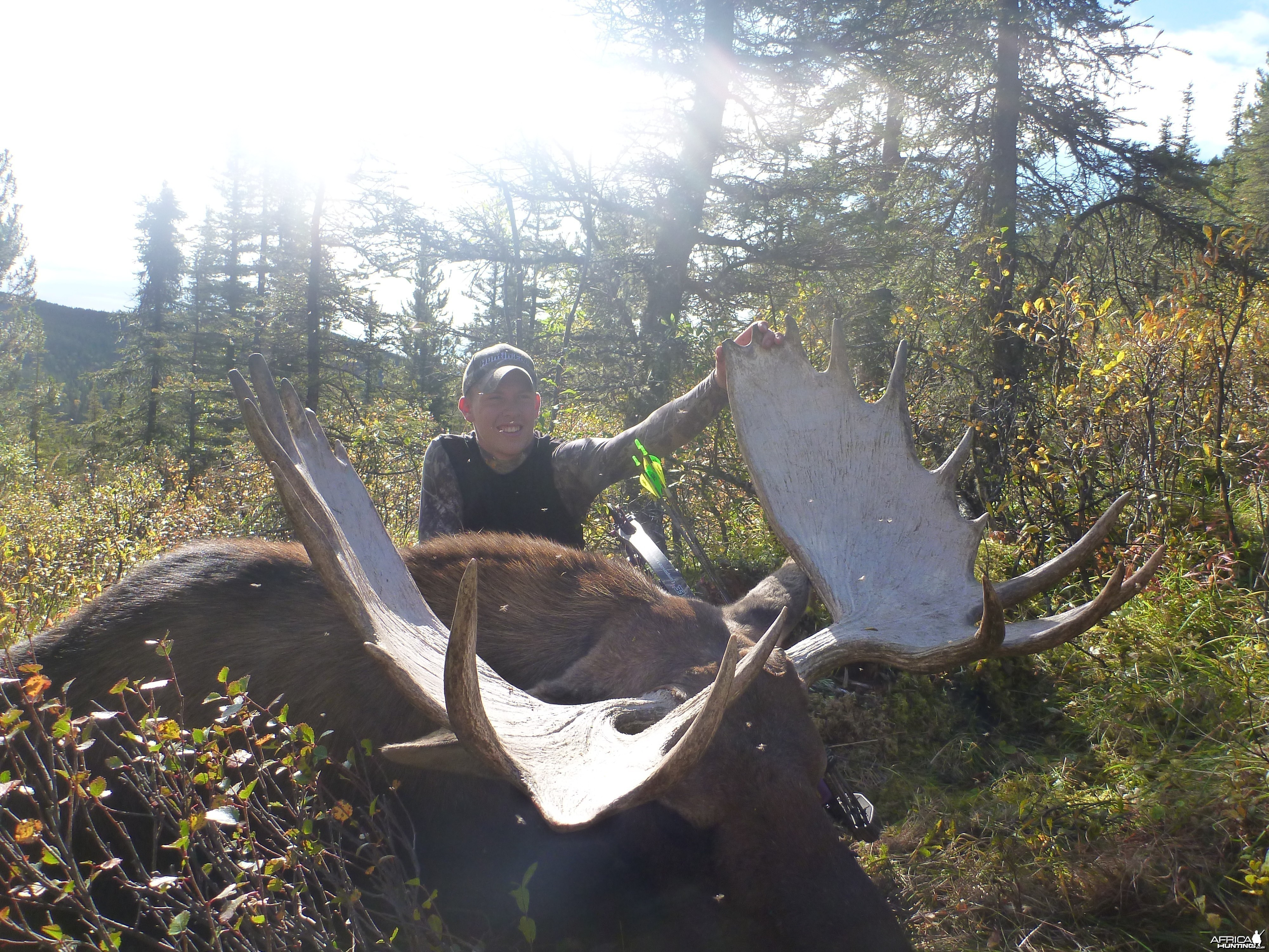 Dakota's British Columbia Moose with a bow