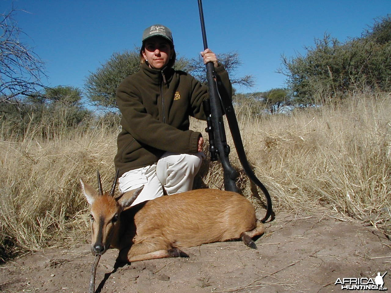 Gray Duiker Hunting in Namibia