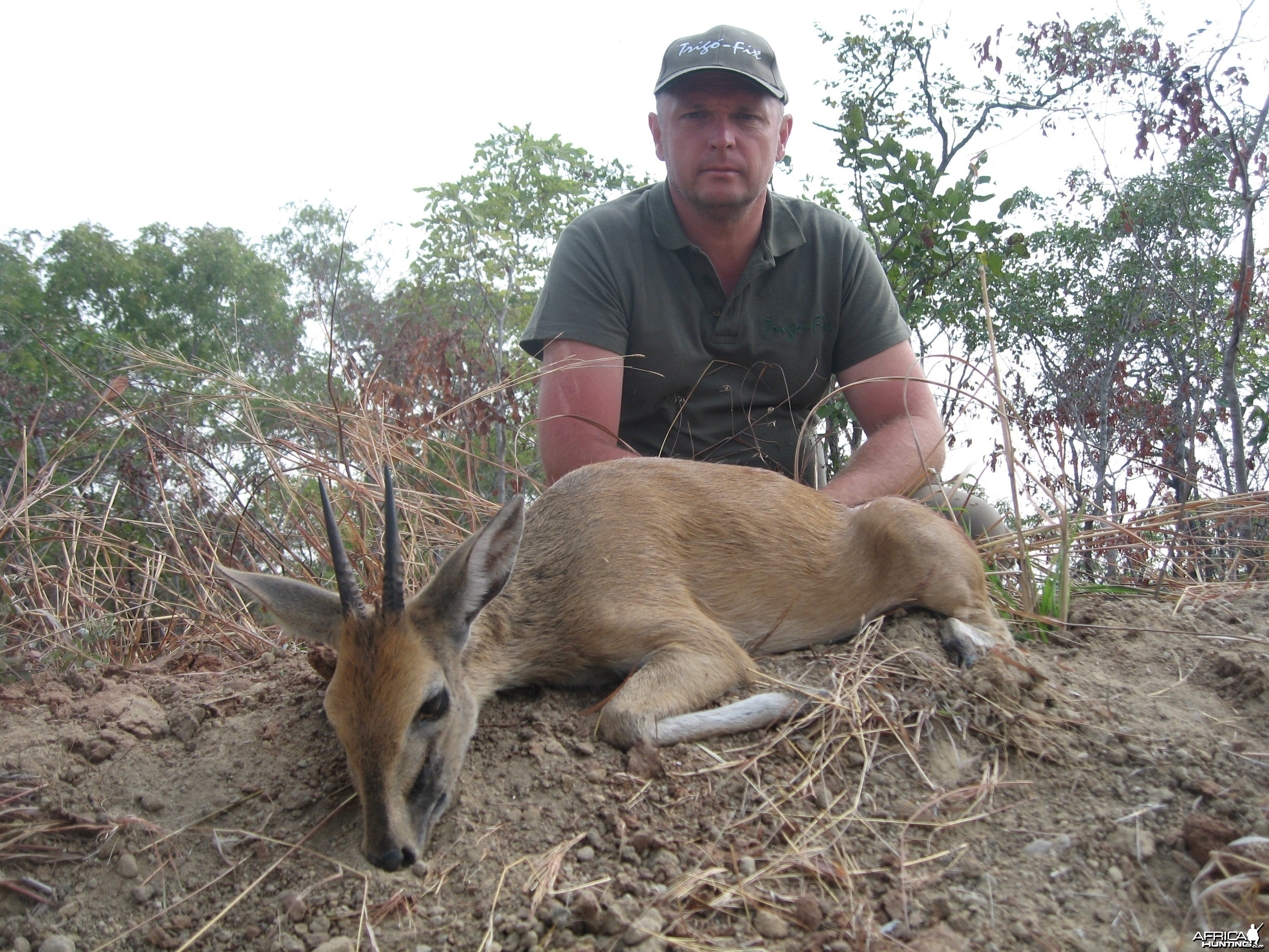 5 inch Bush Duiker hunted in Tanzania