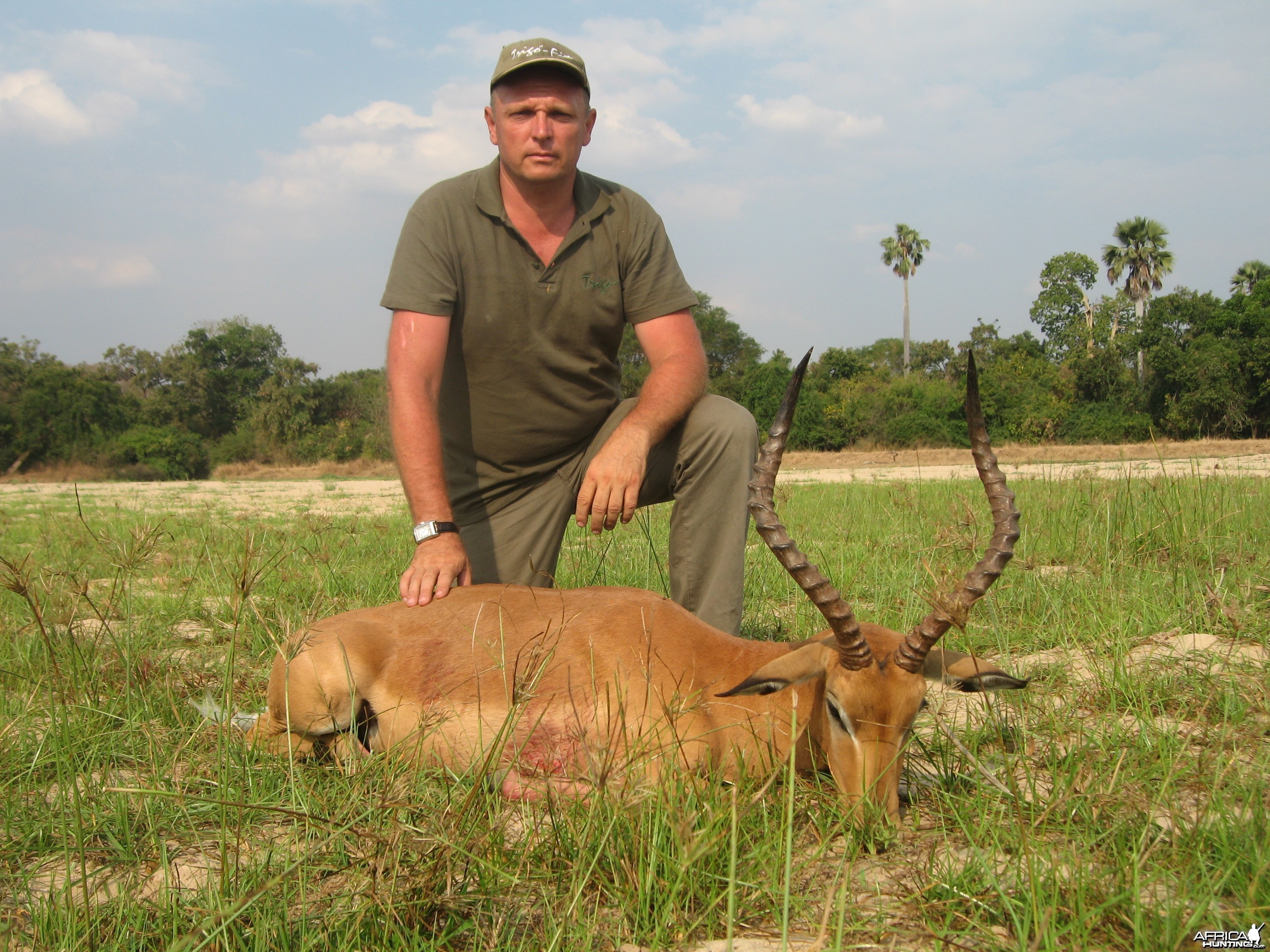 Impala for Leopard bait