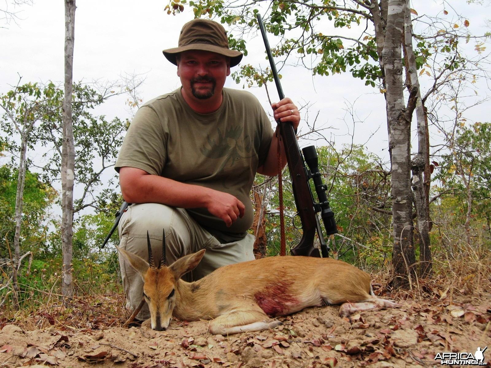 5 inch Eastern Bush Duiker
