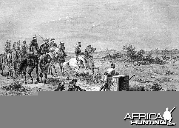 Hunting Antilopes with Cheetahs
