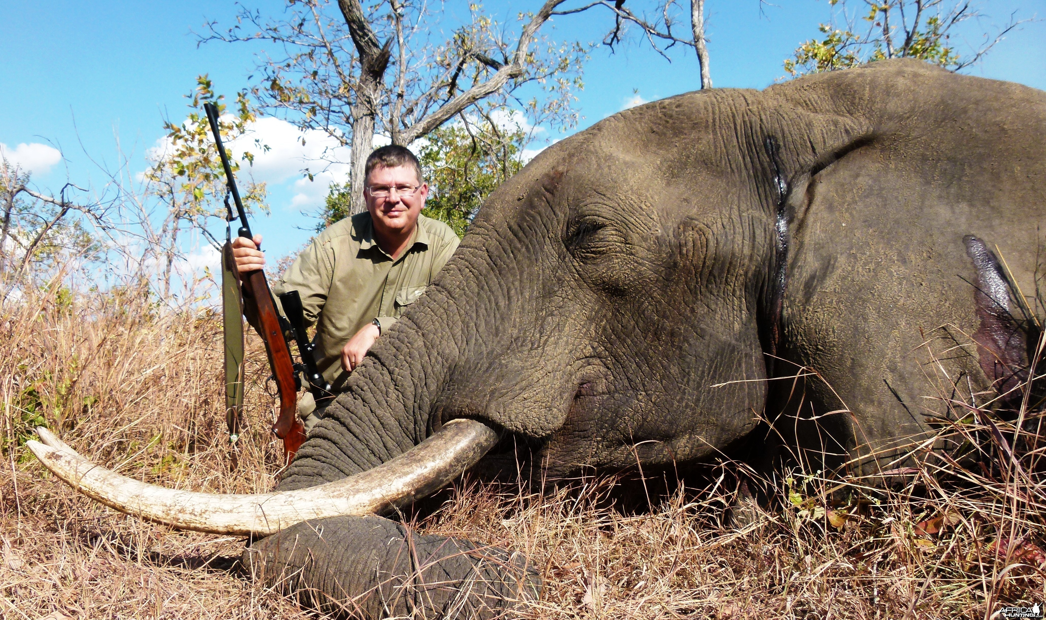 Brain shot on Elephant... Tanzania