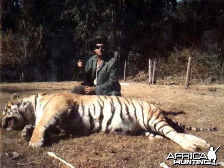 Игры Охота На Тигра С Ружьем