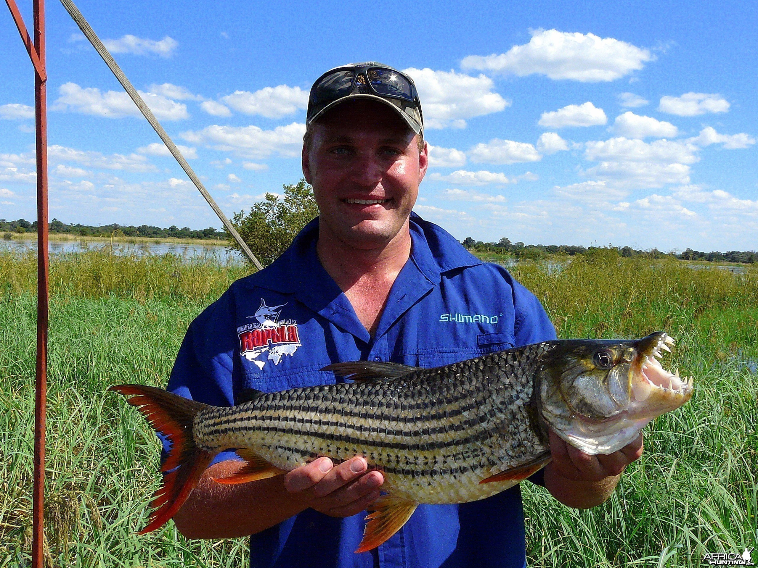 4.5kg Tiger Fish on the Okavango River, Namibia
