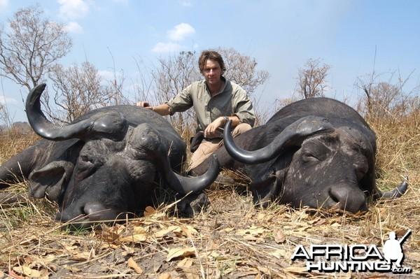 Buffalo Double Tanzania