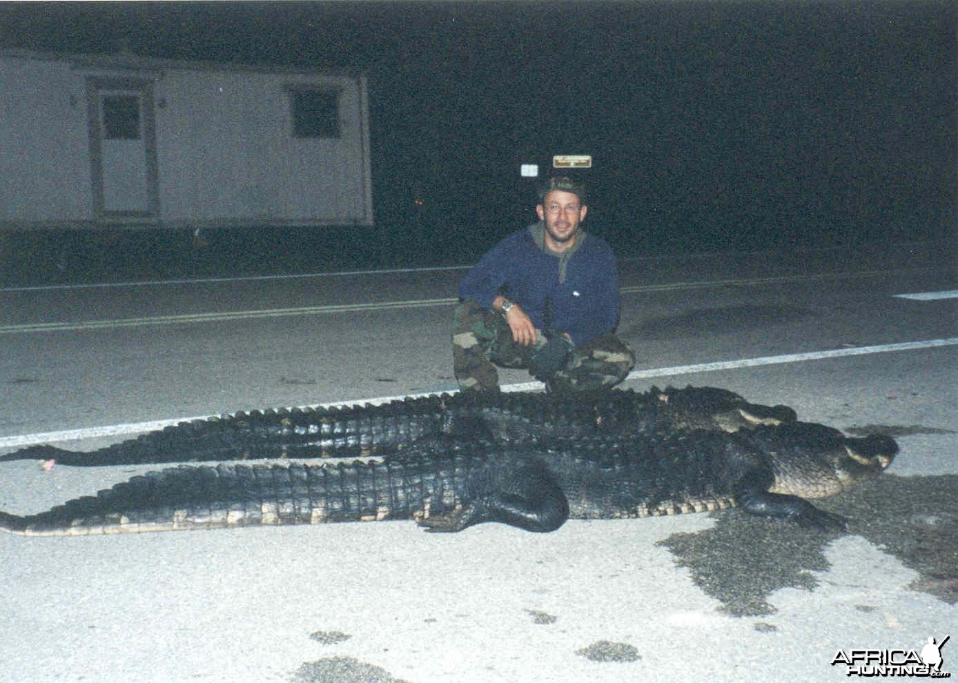 Hunting Alligators