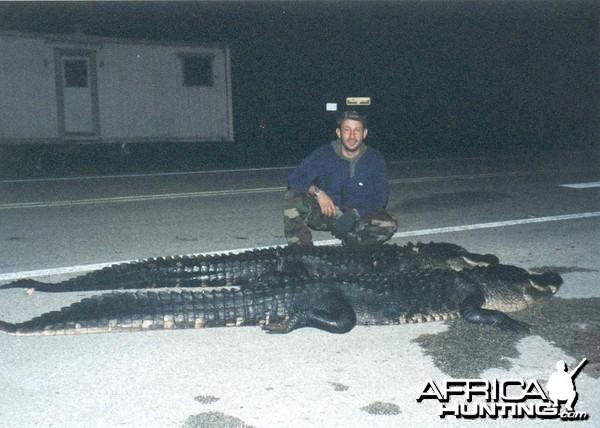 Hunting Alligators