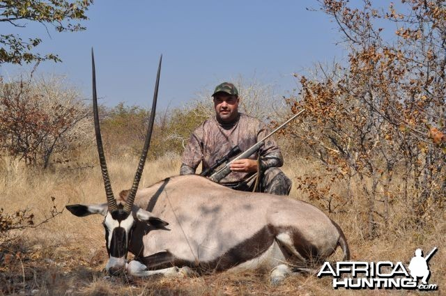 Gemsbok cow Namibia Hunt
