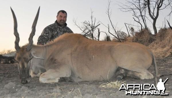 Eland cow Namibia Hunt