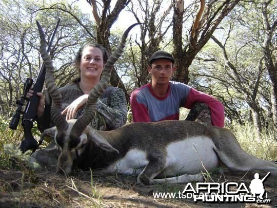Black buck - Argentina