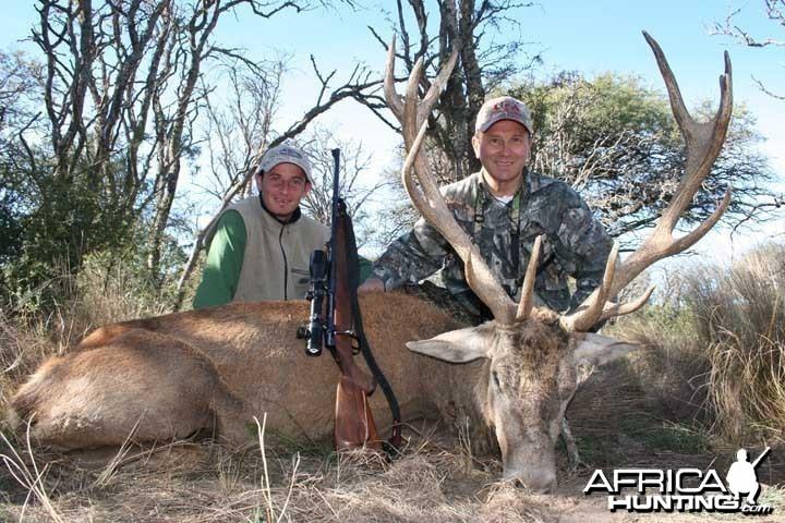 Red Deer - Argentina