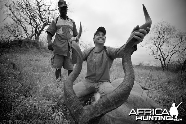 kudu, horns