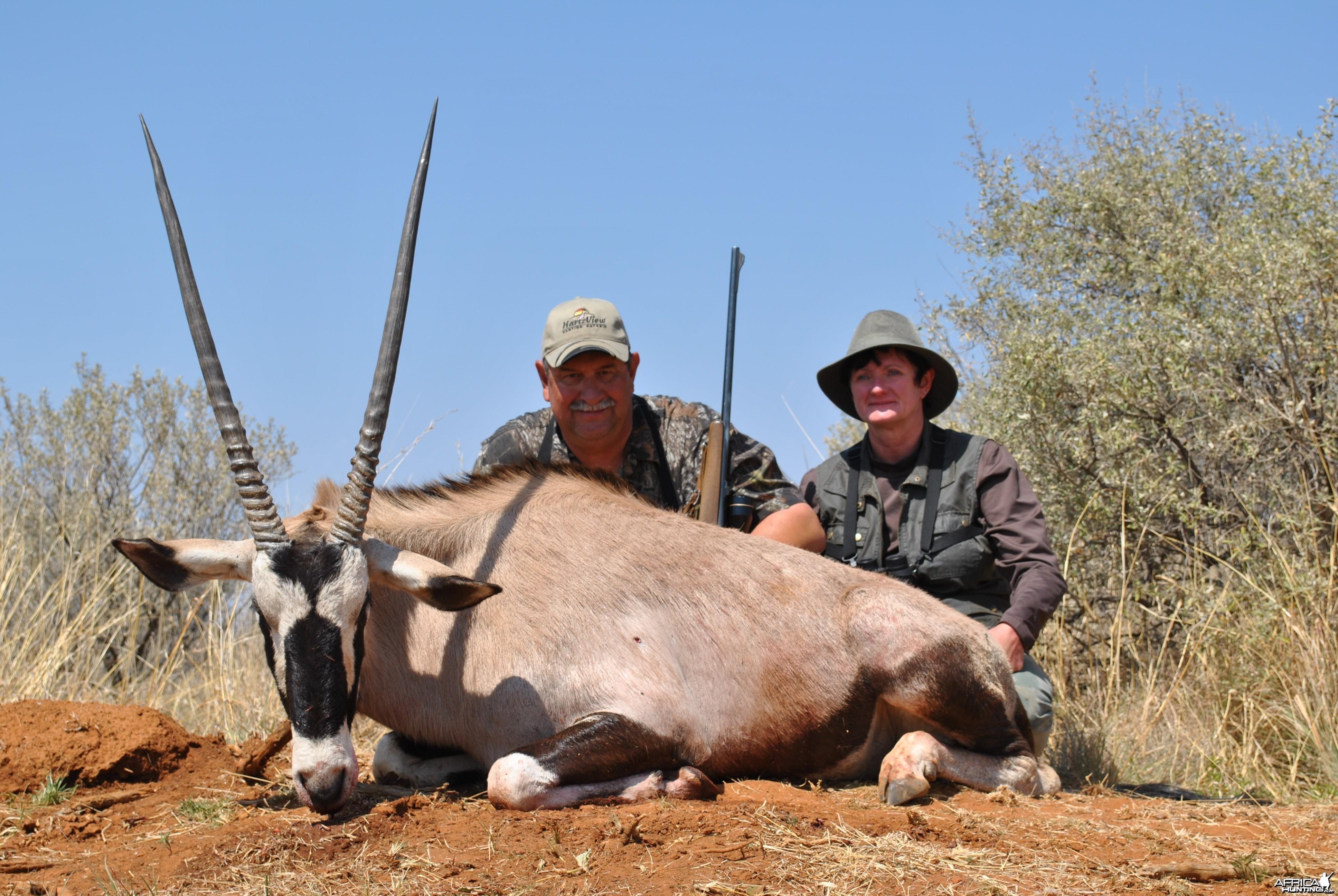Gemsbok (Oryx)