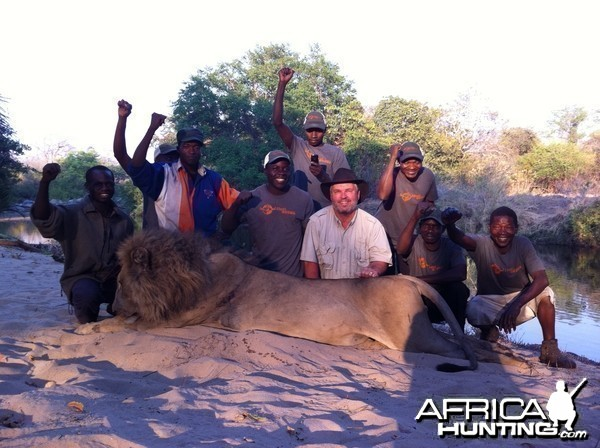 Lion hunted in Mozambique