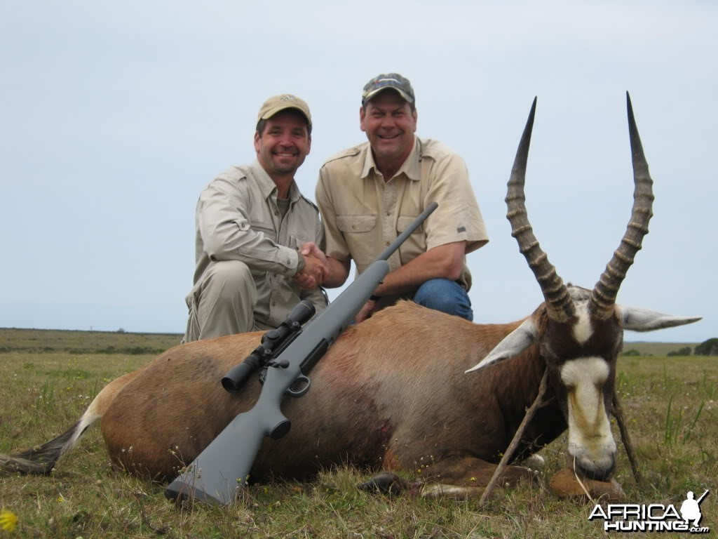 Blesbok South Africa
