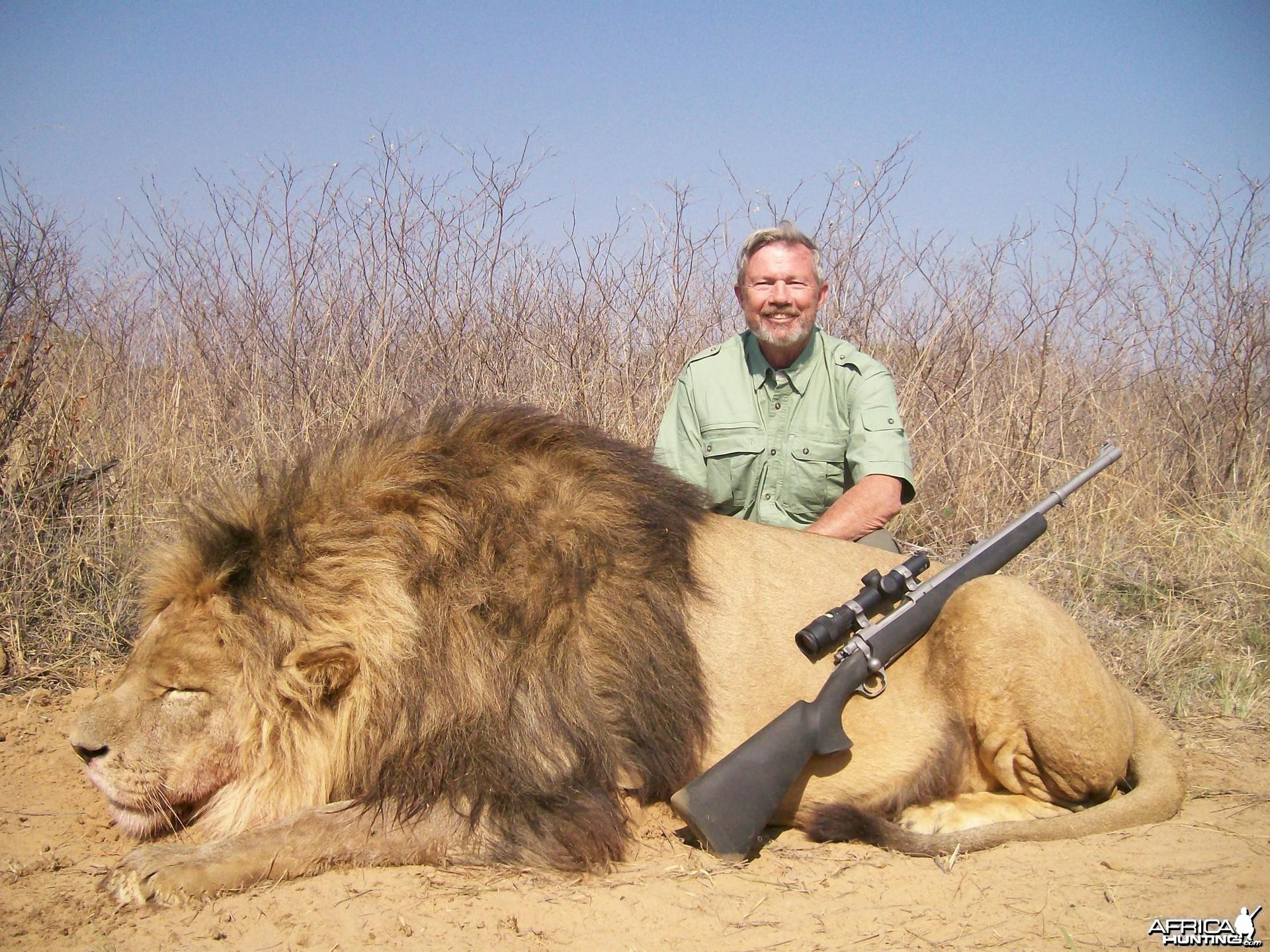 Lion Hunt at HartzView Hunting Safaris