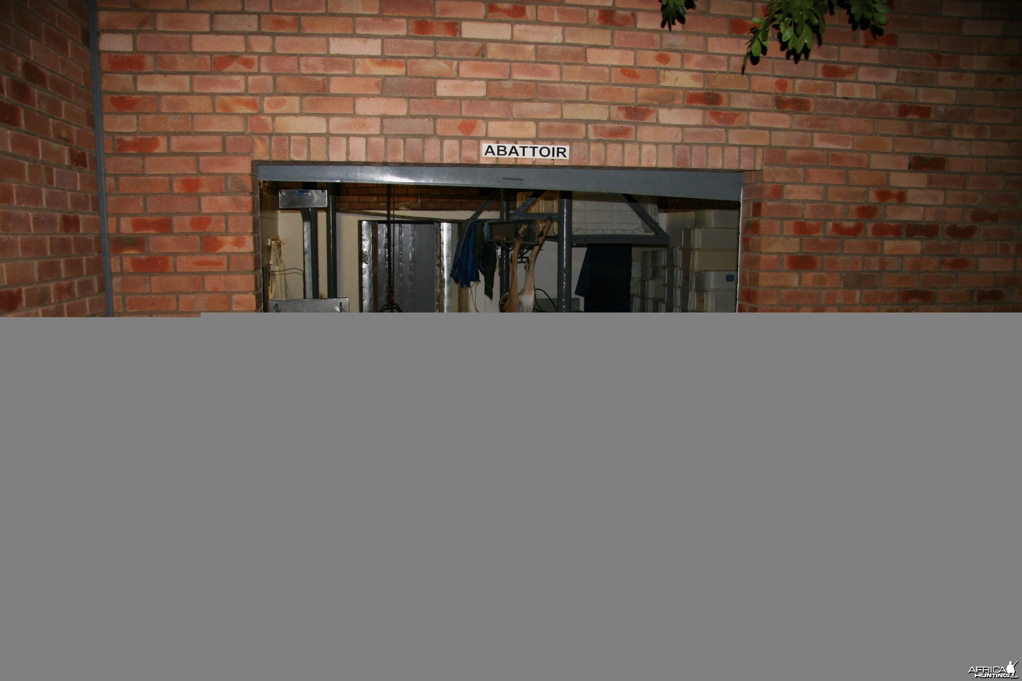 Skinning Room at Butchery