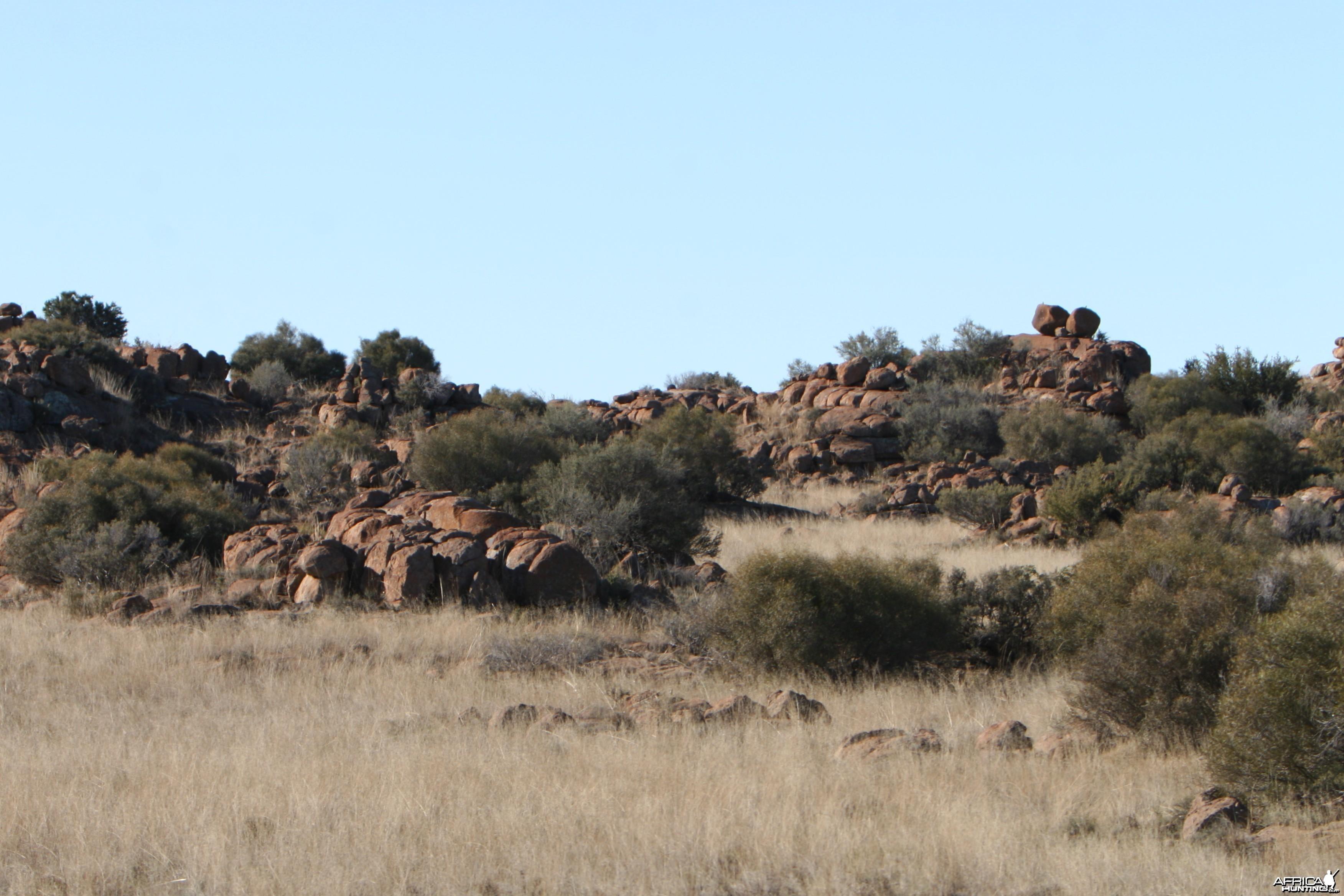 Karoo Rock Erratics