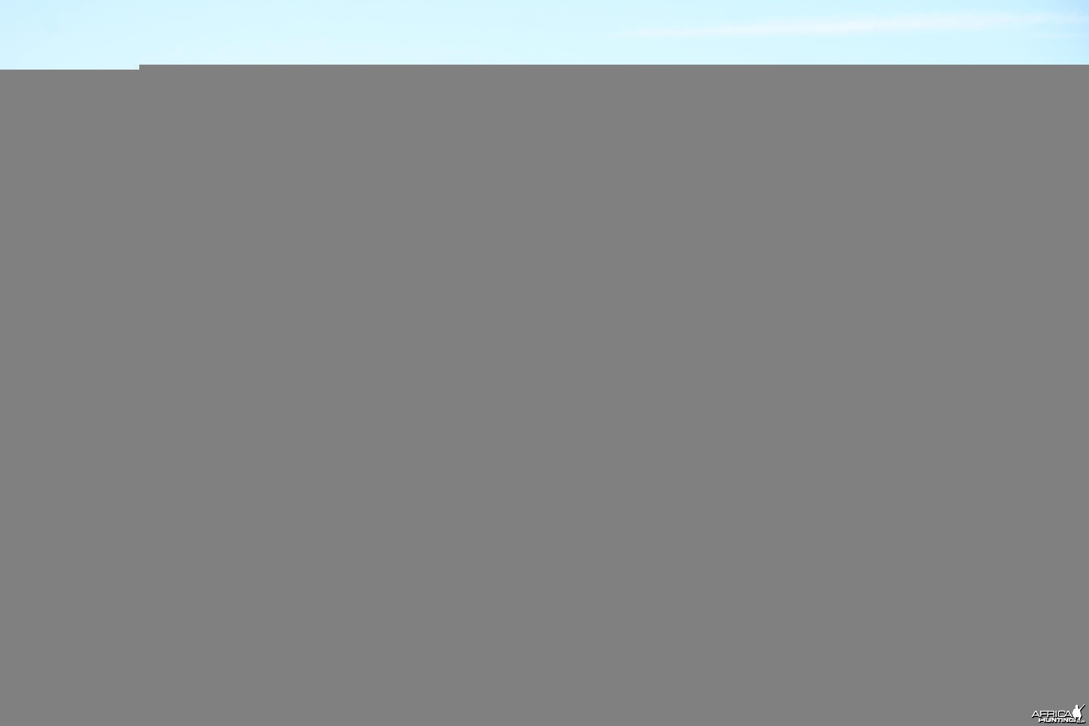 Archery Range - Karoo