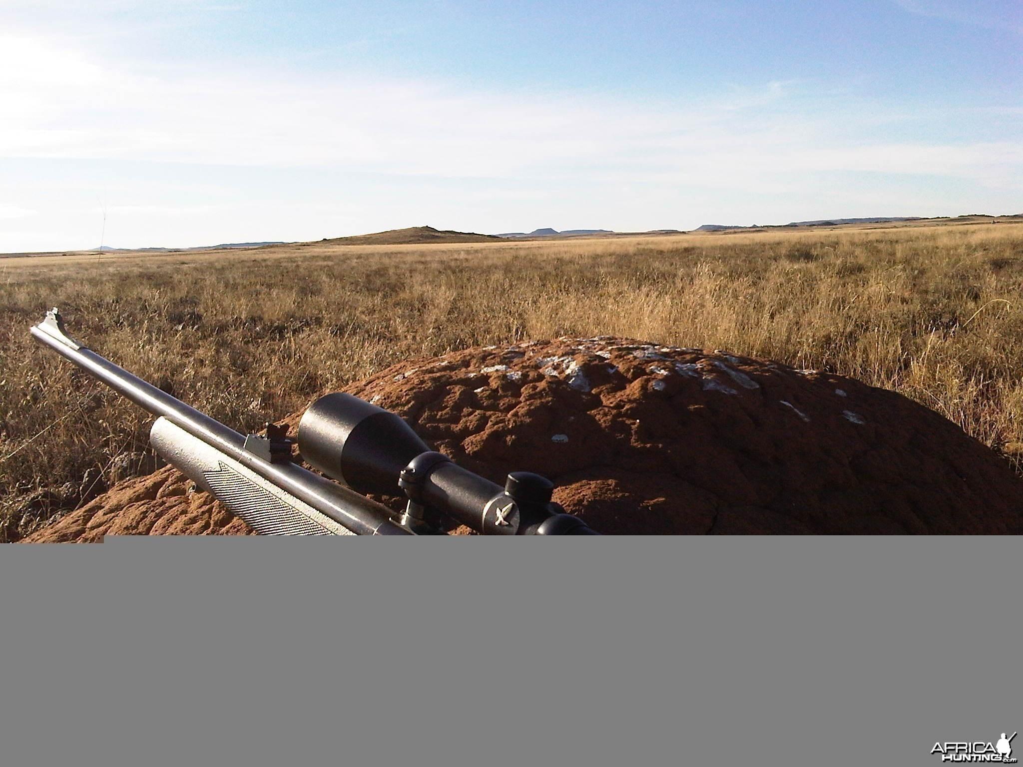 Karoo Hide