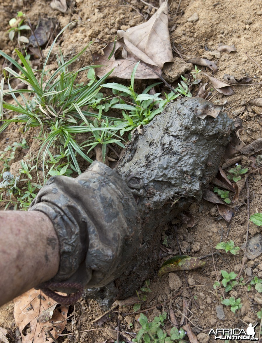 Boot caked in wet mud