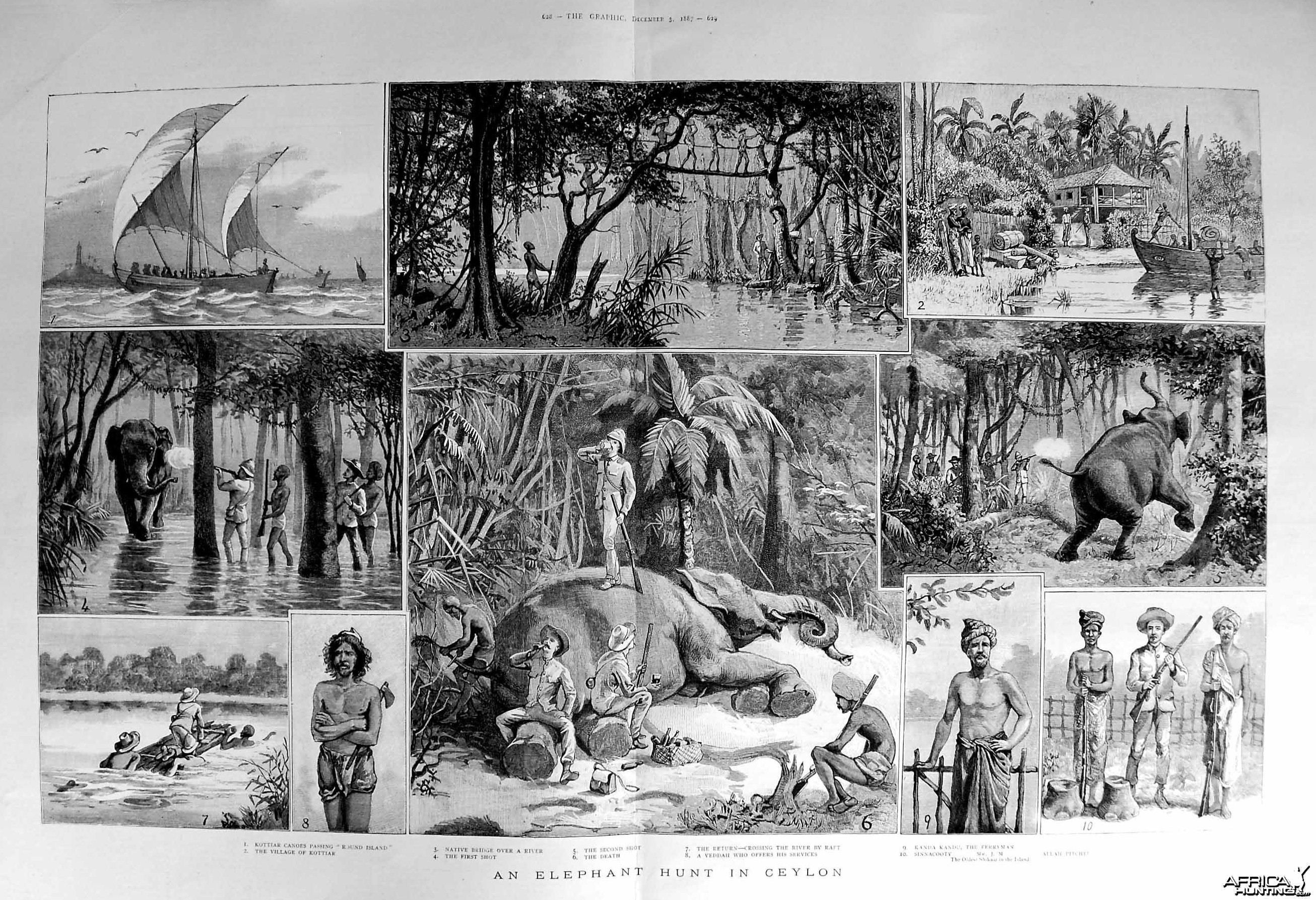 An Elephant Hunt in the Ceylon