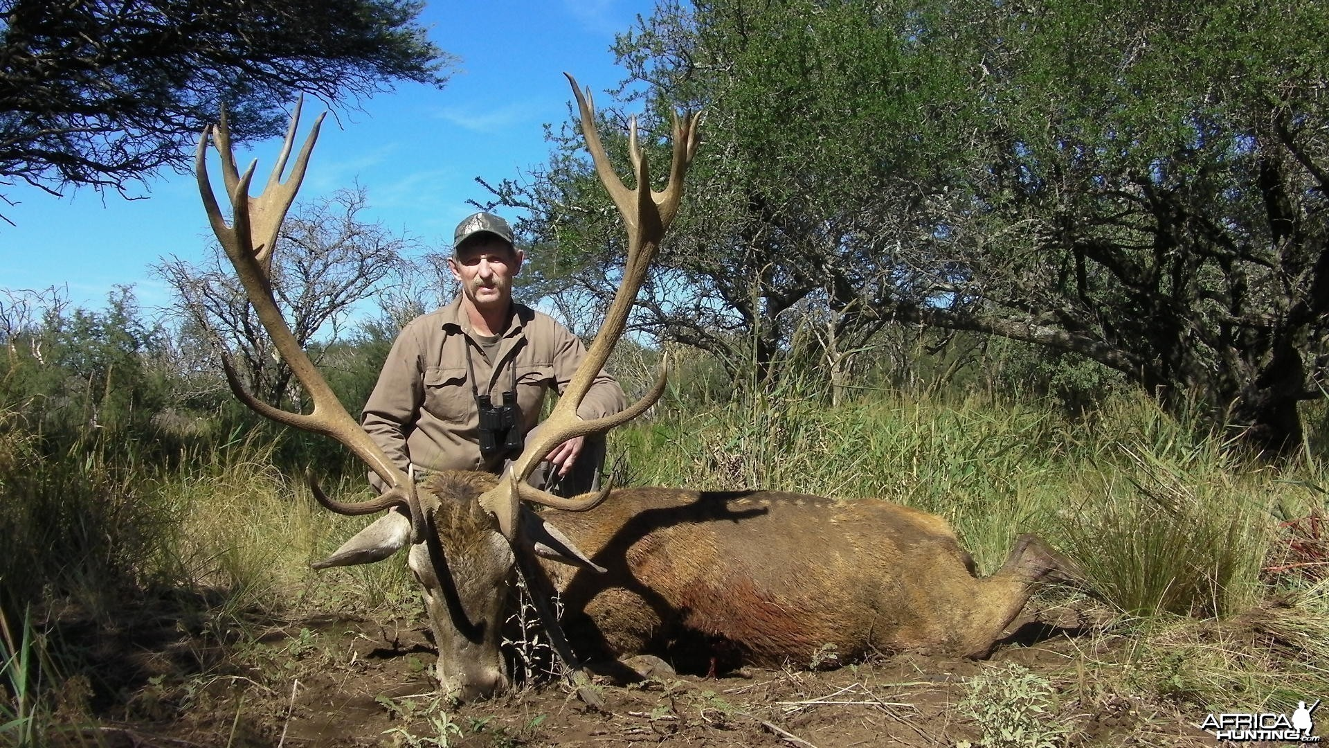 Red Deer Hunt in La Pampa Argentina