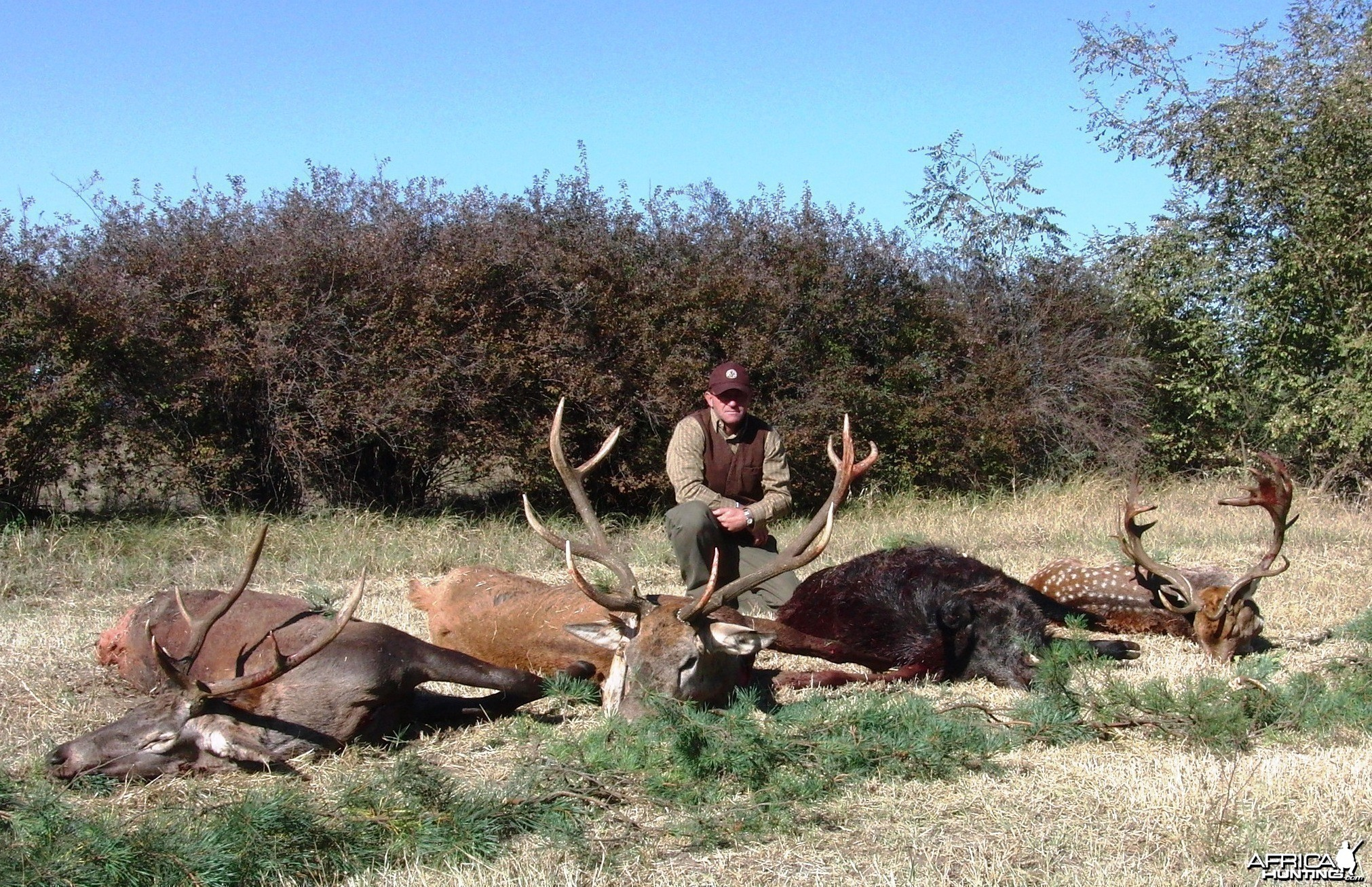 Hunting in Hungary