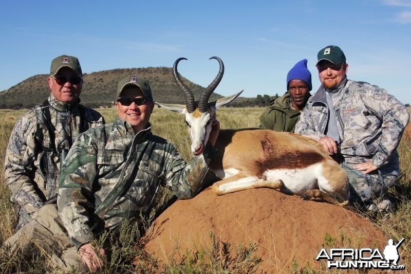 Springbok hunted in South Africa