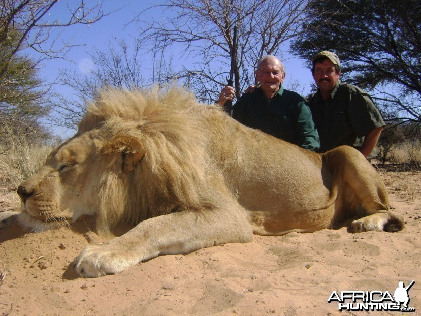 Hunting lion with Savanna hunting safaris