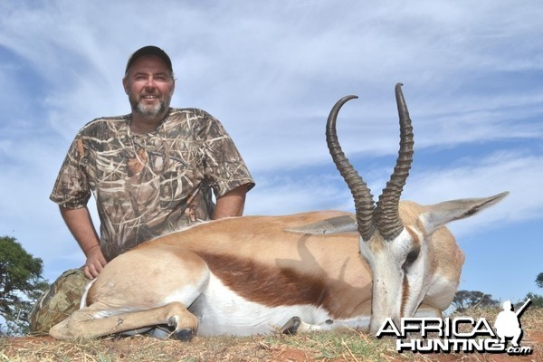 Springbok South Africa
