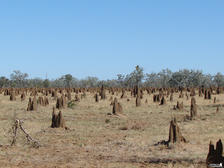 Arnhem Land Australia