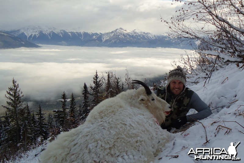 British Columbia Rocky Mountain Goat Hunt