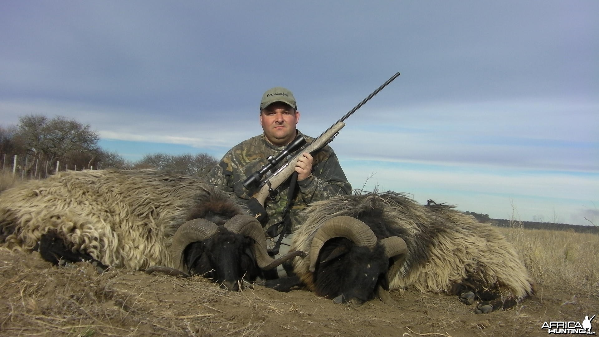 Hunting Patagonian Ram in Argentina