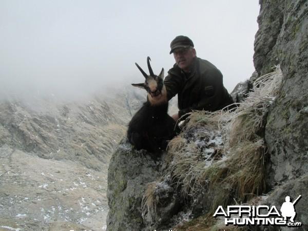 Hunting Chamois in Romania