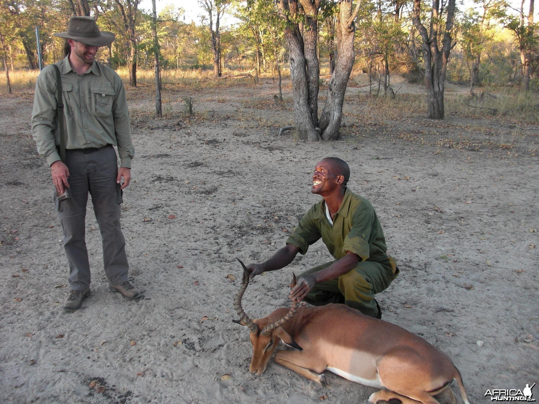 Good impala Zimbabwe