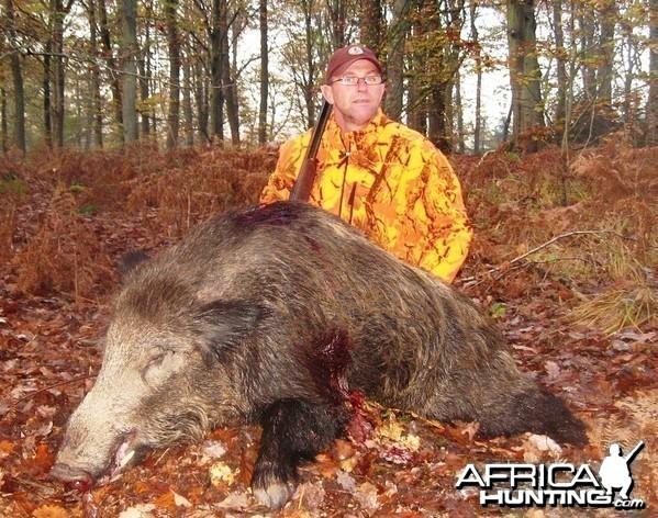 126 kg Wild boar