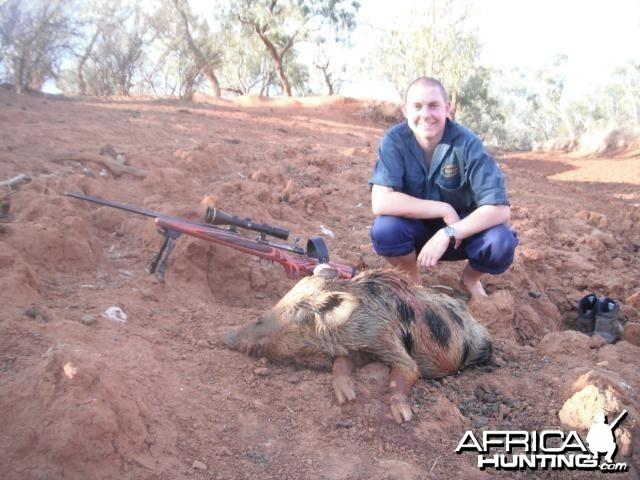 Hunting Pig in Australia
