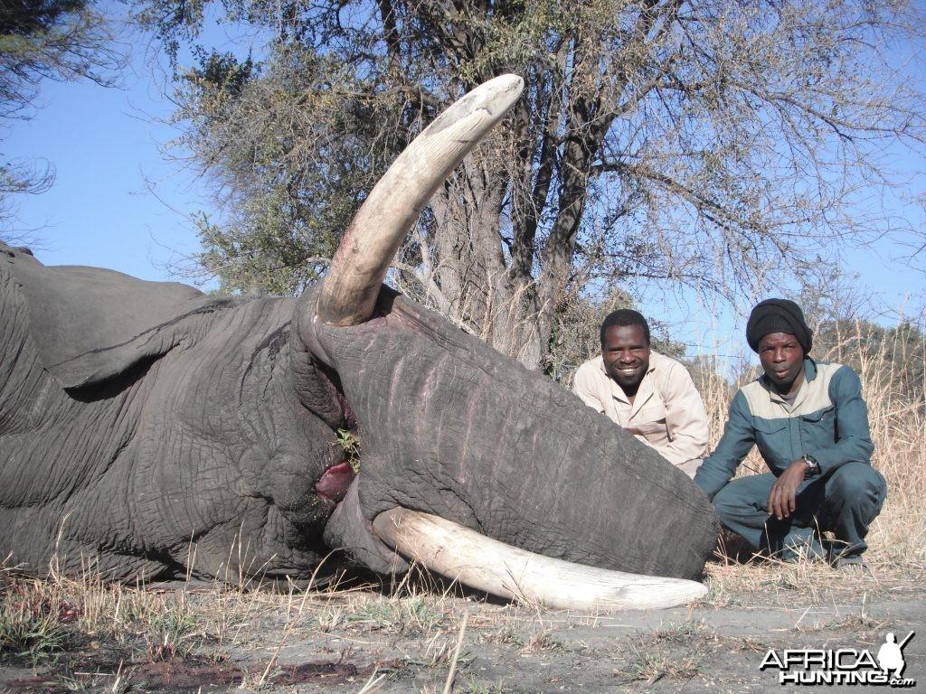 Elephant Trackers Caprivi