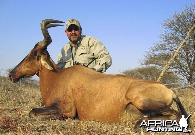 Red Hartebeest Blaser R93. 338 Win Mag. Limpopo 2008.