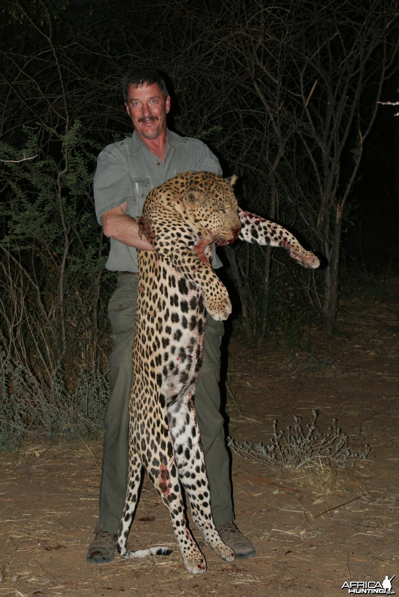 Leopard Namibia