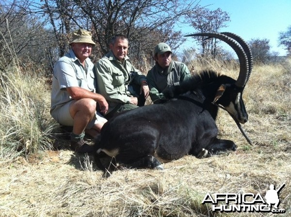 Holstein Hunting Safaris Namibia - PH Gunther Heimstadt with Sable