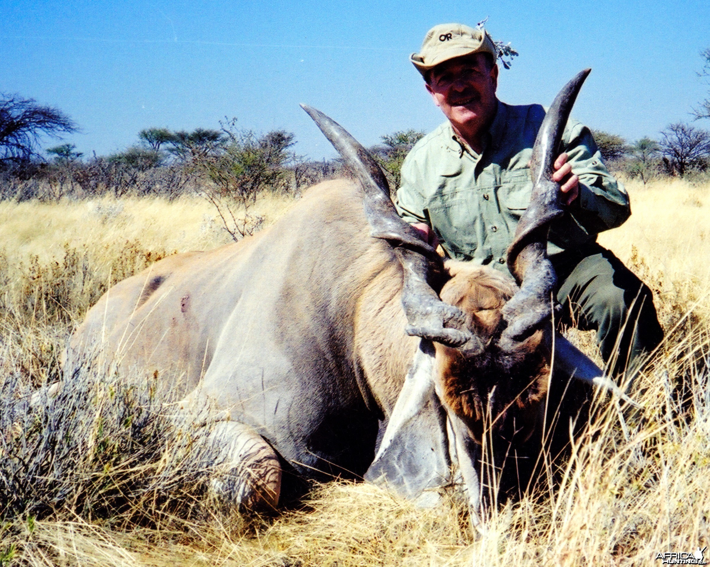 "46 "" Cape Eland taken in Namibia 2000"