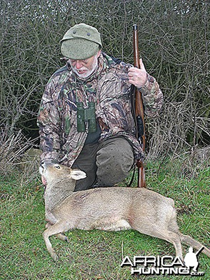 Hunting Chinese Water Deer