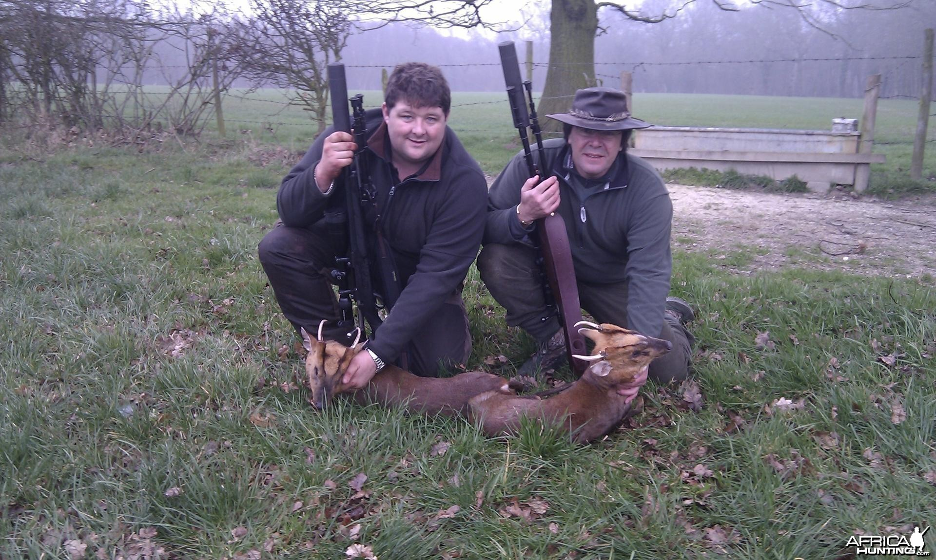 Muntjac hunt in the UK