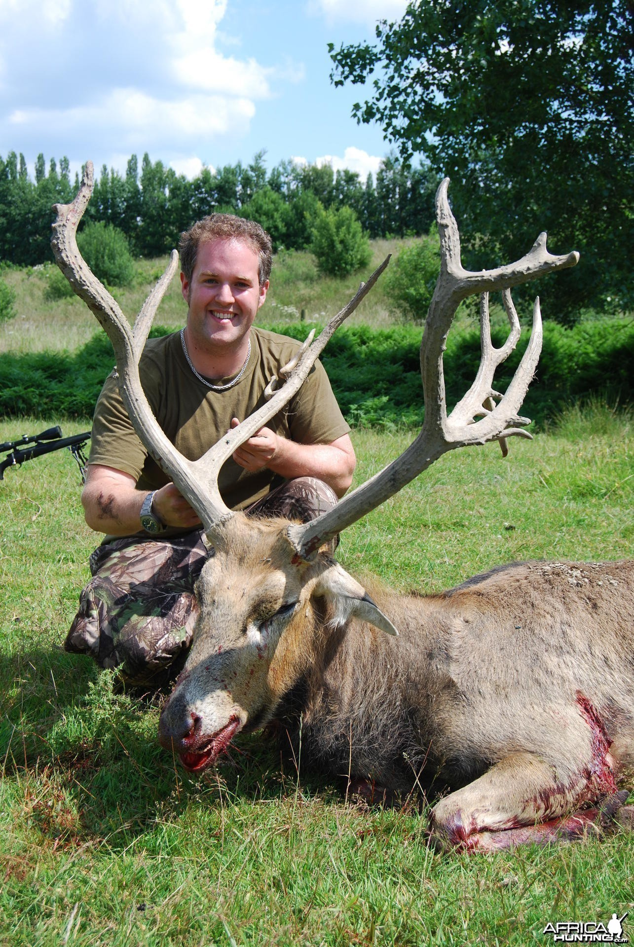 Hunting Pere David's Deer in the UK