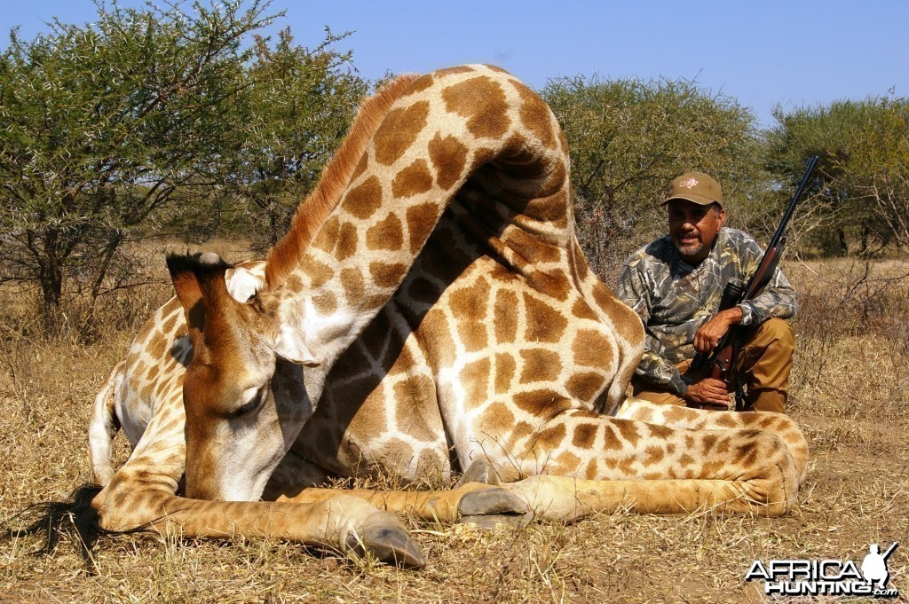 Hunting Giraffe in South Africa with Dalerwa Ventures for Wildlife