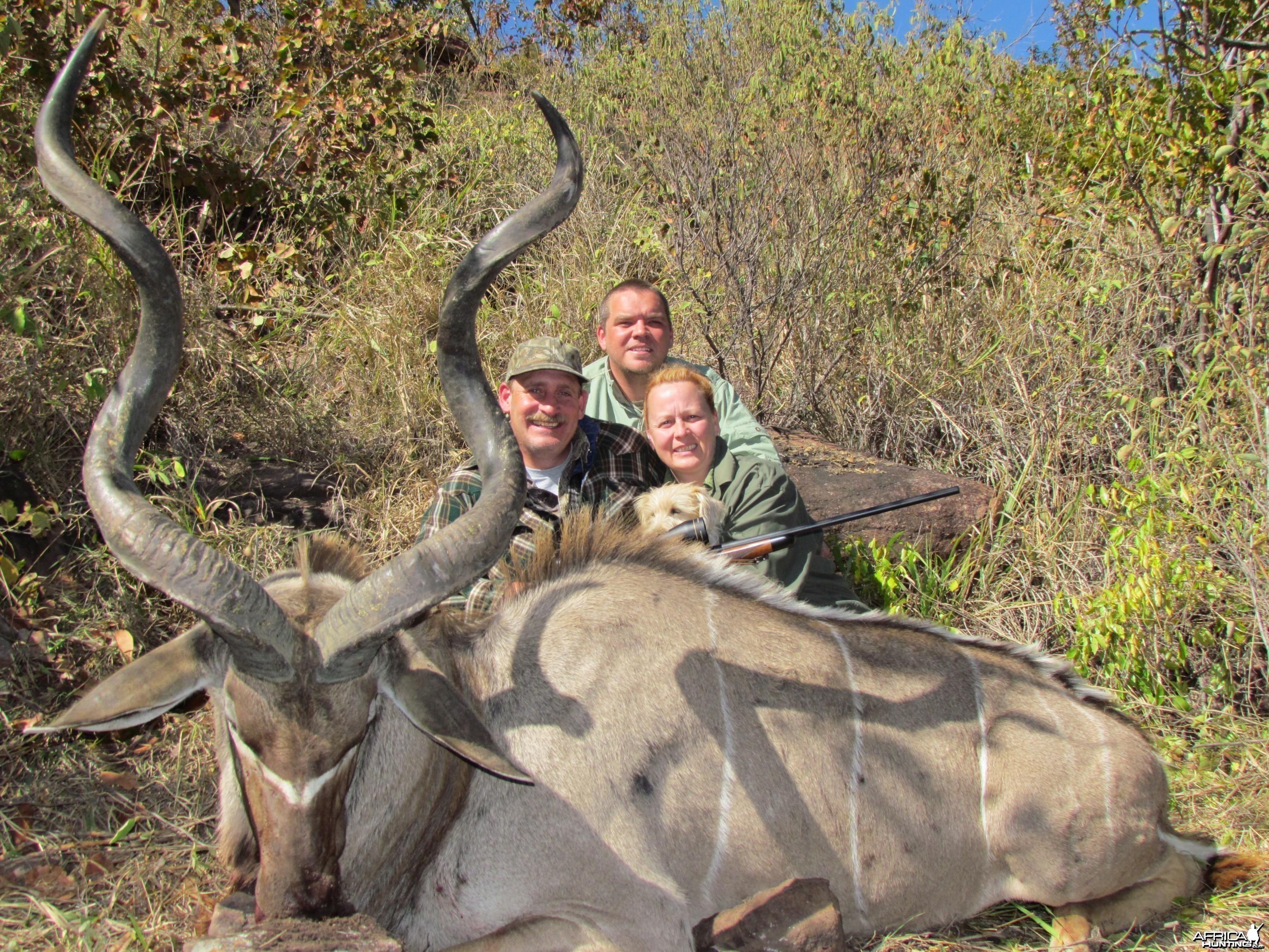 52+ Kudu Bull